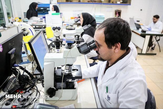 راه اندازی صندوق پژوهش و فناوری در دانشگاه امیرکبیر