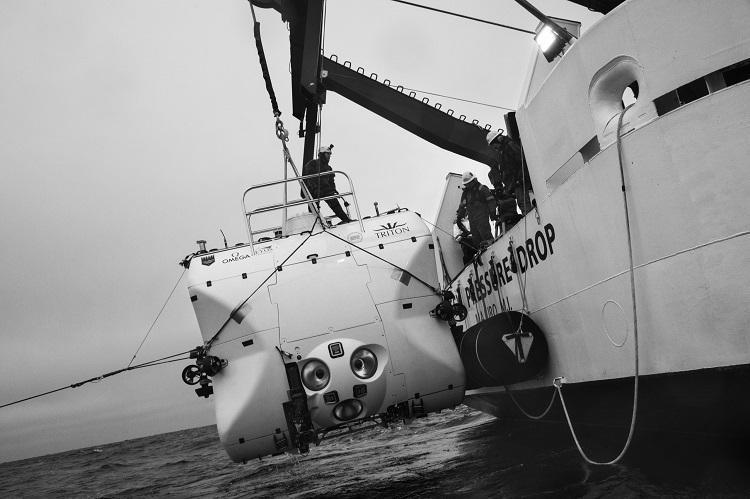 (تصاویر) اولین موجود زنده ای که به عمیق ترین نقطه دریا رسید!