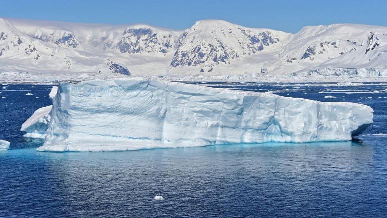 میکروپلاستیک ها به جنوبگان هم رفتند