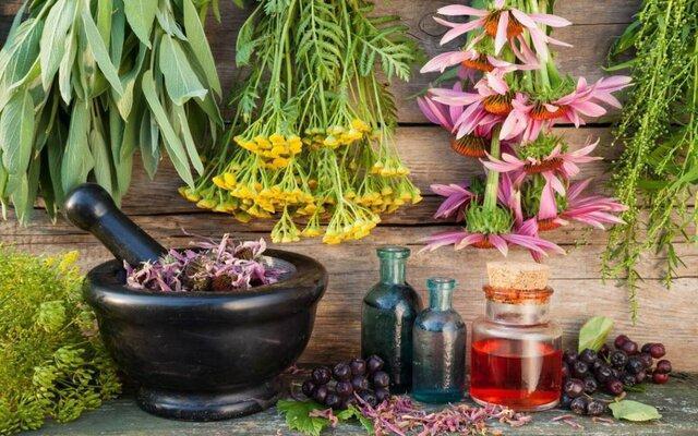 وبینار کاربرد و خواص گیاهان دارویـی