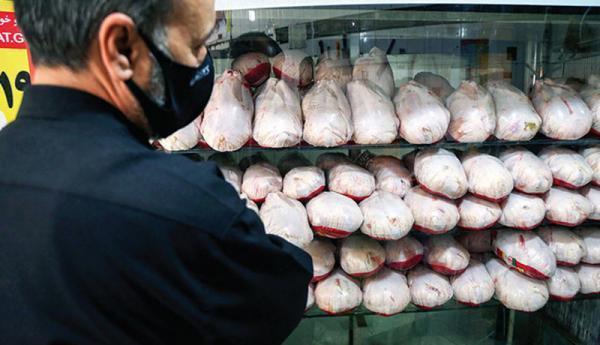 بازار مرغ به تعادل می رسد