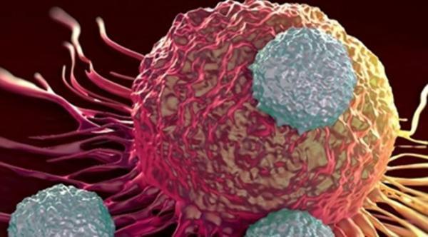 تشخیص ویژگی های بیماران سرطانی با دستگاه جدید شرکت های دانش بنیان
