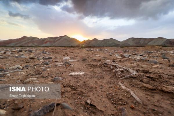 خشکسالی و رویکرد واکنشی مبتنی بر مدیریت بحران